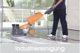 industrierein_fin